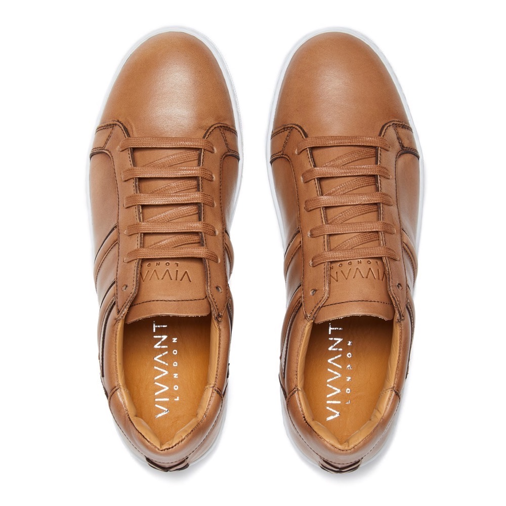 Sneakers Burinish Brown Leather T